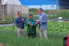 Kunjungan ke Pabrik Benih Cap Panah Merah, Wakil Menteri Belanda Jajaki Kerja Sama