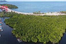 Mengenal Hutan Perempuan, Sepotong Surga di Teluk Youtefa Papua yang Rusak karena Tangan Manusia