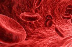 Infeksi Aliran Darah