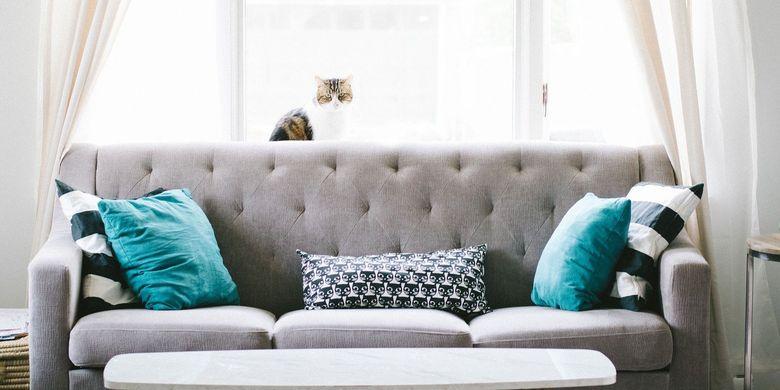 Hindari 5 Kesalahan Umum Saat Membeli Sofa