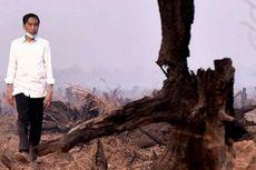 Hari Ini, Presiden Jokowi Tinjau Kebakaran Hutan di Jambi