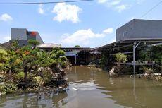 Akibat Banjir, Toko Tanaman di Tangerang Rugi hingga Puluhan Juta