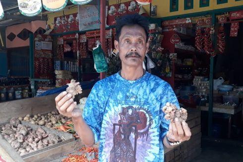 Dianggap Tangkal Corona, Harga Jahe dan Kunyit di Palopo Naik