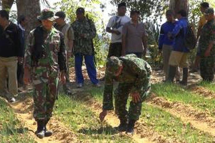 Tanaman milik warga yang diserang sekelompok kera di Desa Basoka, Kecamatan Rubaru, Kabupaten Sumenep.