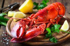 7 Manfaat Lobster untuk Kesehatan