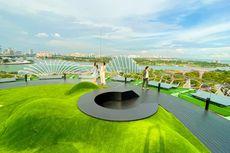 Wisata Terbaru di Singapura, Naik ke Atas Pohon Tertinggi Gardens by The Bay