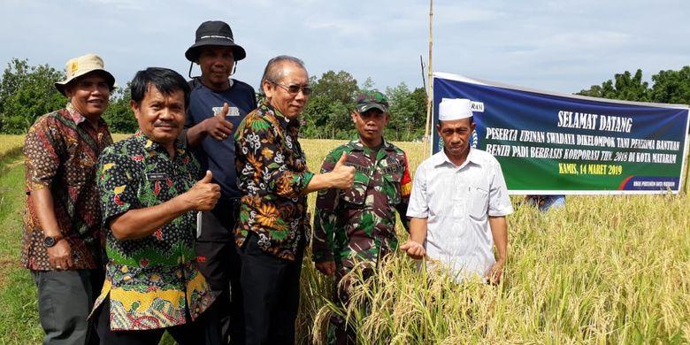 Direktur Perbenihan Tanaman Pangan Takdir Mulyadi saat melakukan kunjungan lapangan Mataram, Nusa Tenggara Barat (NTB)