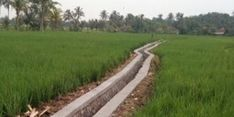 Tanah di Desa Cibodas, Purwakarta, Sering Kehilangan Air, Kementan Laksanakan Program RJIT