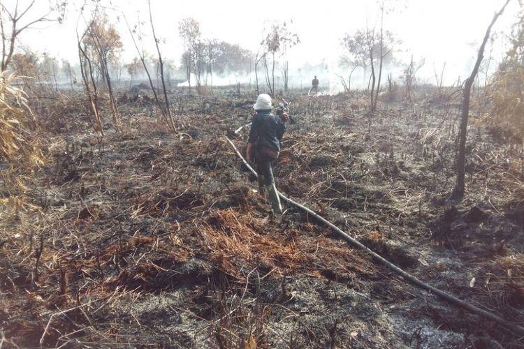 Kebakaran hutan dan lahan yang terjadi di Kecamatan Tapung, Kabupaten Kampar, Riau, pada bulan Agustus 2018 lalu.