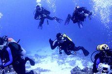 Sensasi Menyelam, Menikmati Pesona Bawah Laut