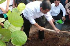 Jokowi Bangun Taman Kota Rp 18 Miliar di Waduk Pluit
