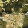 Makam Hewan Ungkap Evolusi Relasi Manusia dengan Peliharaannya