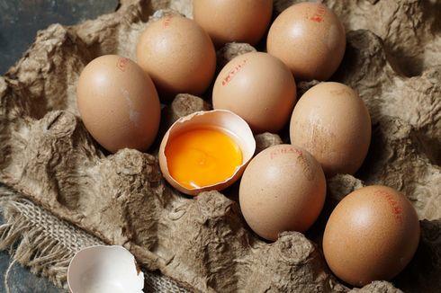Cara Simpan Telur di Kulkas, dari Telur Mentah sampai Rebus