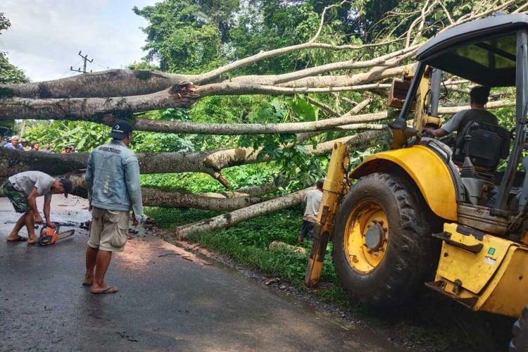 Petugas dari Pemkab Muara Enim melakukan pembersihan terhadap pohon yang tumbang fi ruas jalan Tanjung Enim-Muara Enim Rabu (29/1/2020)