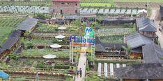 Kisah Pujon Kidul, Sukses Kelola Dana Desa Hingga Berhasil Tingkatkan PADes