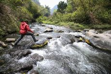 Seri Jejak Pendaki Semeru: Soe Hok-Gie, Kisah Pendaki dan Gunung Semeru