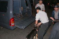 Anjing Pelacak Temukan Bercak Darah di Dekat Lokasi Penembakan Pondok Aren