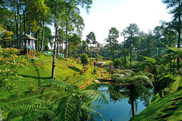 Aliran sungai di kawasan perkebunan teh Pagilaran. Kabupaten Batang, Jawa Barat.