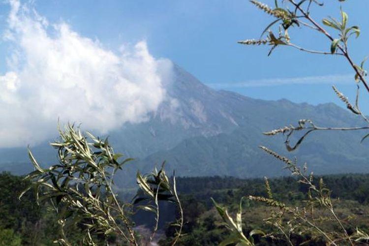Panorama Gunung Merapi dari bungker Kaliadem, Sleman, Yogyakarta.