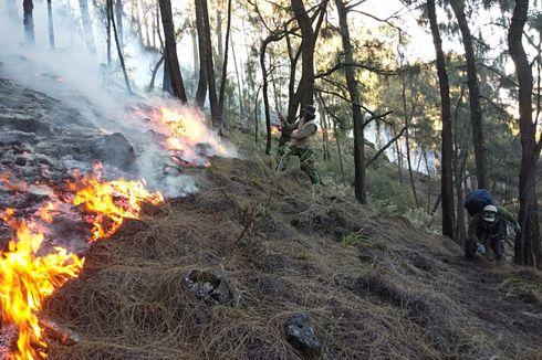 BNPB Sebut Kebakaran Hutan dan Lahan di Sekitar Gunung Arjuno Telah Padam
