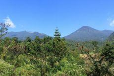 6 Gunung Dekat Jakarta, Cocok untuk Para Pencinta Kesegaran