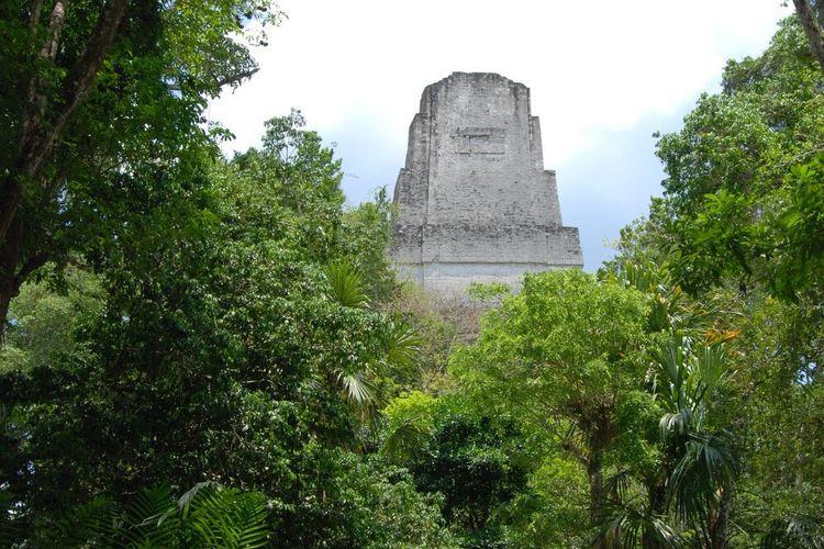 Kota kuno Tikal, merupakan pusat kota dari peradaban Maya.