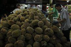 Terungkap… Rahasia Sukses Durian Ucok Medan