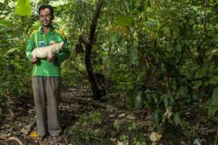 Pak Mardi membawa salah satu souvenir badak yang berukuran paling besar.