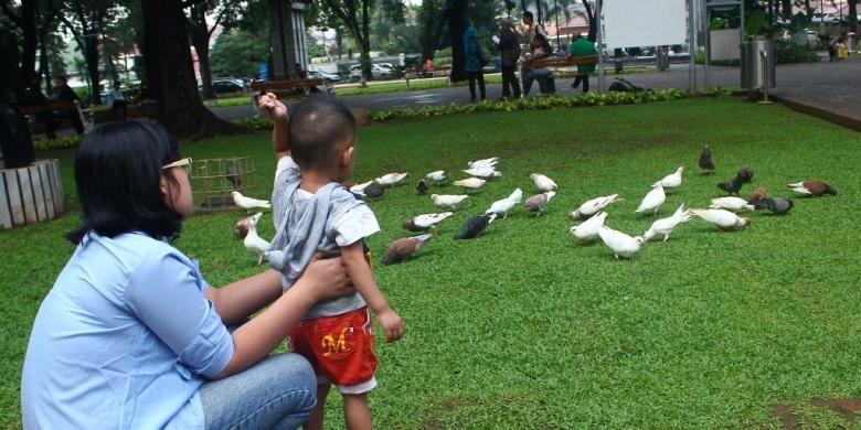 Pengunjung memberi makan merpati-merpati yang ada di Taman Suropati, Jakarta