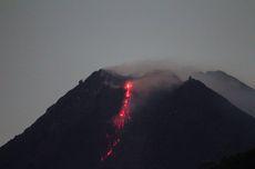 Gunung Merapi Kembali Luncurkan 50 Kali Guguran Lava Pijar dalam 6 Jam