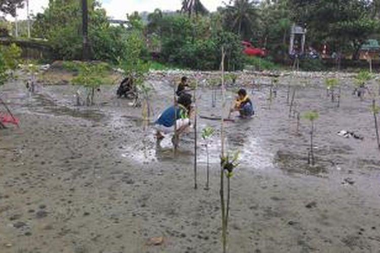 Puluhan anggota Mahasiswa Pecinta Alam (Mapala) Fisip Universitas Pattimura Ambon,  menanam anakan mangrove di kawasan pesisir pantai desa Poka, Kecamatan Teluk Baguala Ambon, Jumat (22/8/2014).