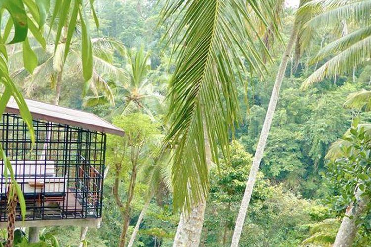Dengan nama Hoshinoya Bali, Hoshinoya Resorts resmi membuka resort di Ubud pada 20 Januari 2017.