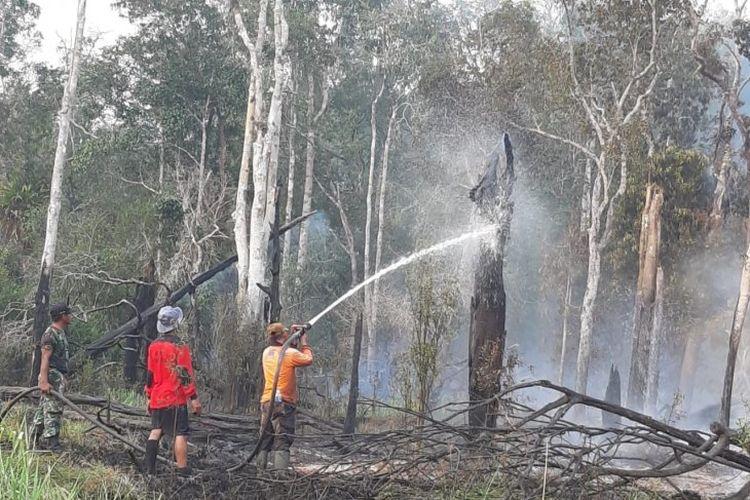Tim gabungan sedang memadamkan kebakaran hutan di kawasan Taman Nasional Danau Sentarum wilayah Kapuas Hulu Kalimantan Barat. ANTARA/Timotius/ Balai Besar Taman Nasional Betung Kerihun dan Danau Sentarum.