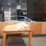 Paw Paw Cafe di Solo, Santai Sambil Main dengan Kucing Lucu