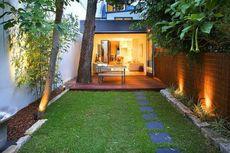 7 Jenis Rumput Hias untuk Mempercantik Pekarangan Rumah