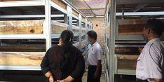 Apartemen Cacing Sutra, Solusi Alternatif untuk Budi Daya Ikan