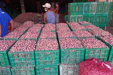 USU Sumbang Teknologi untuk Petani Bawang Merah Siborongborong