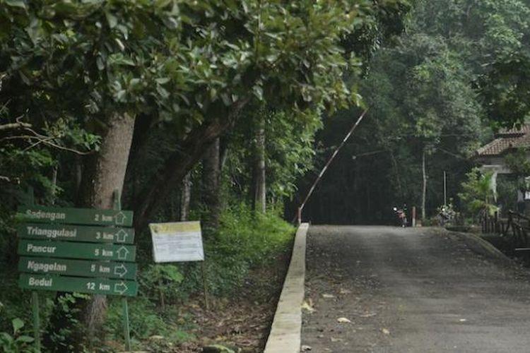 Pertigaan Pantai Ngagelan setelah Pos Rowobendo, Taman Nasional Alas Purwo, Banyuwangi, Jawa Timur.
