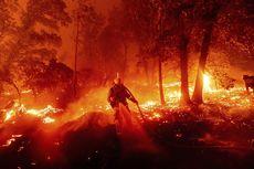 Belasan Korban Terbakar Hidup-hidup di Mobil dan Jalanan Akibat Kebakaran Hutan California
