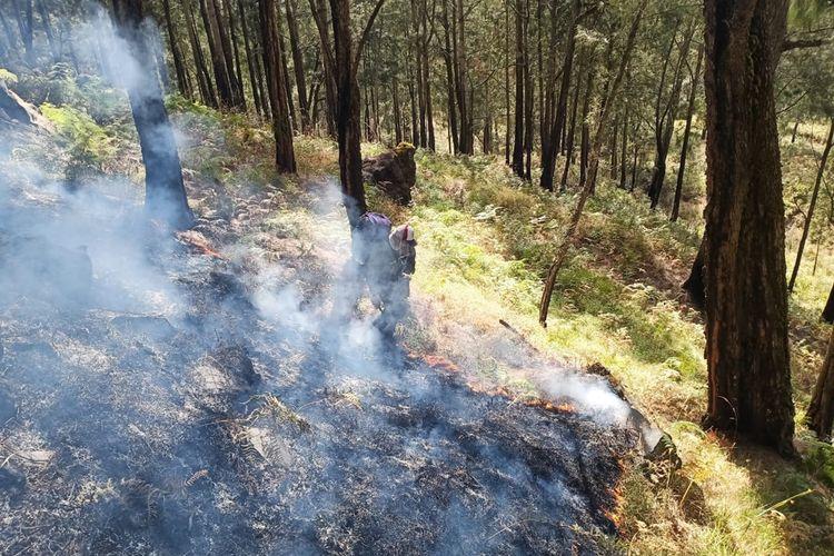 Salah satu tim gabungan saat berusaha memadamkan kebakaran hutan di Gunung Arjuno, Jawa Timur, Senin (30/9/2019)
