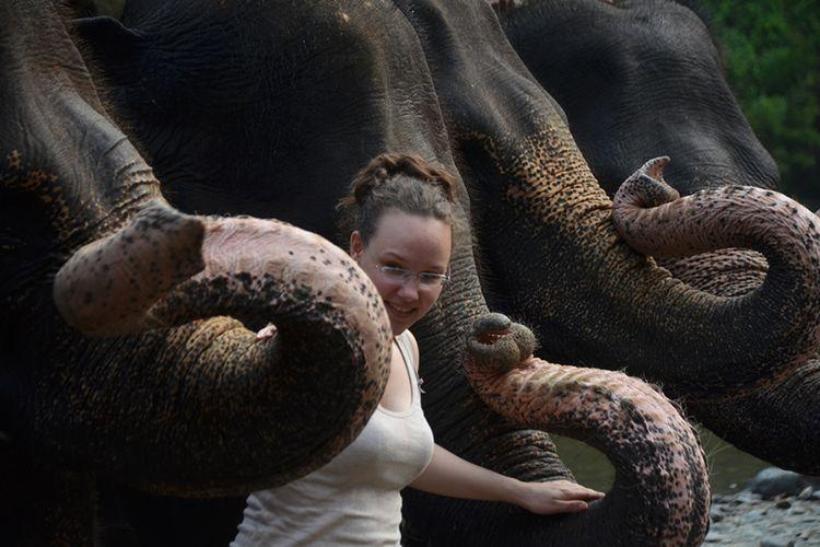 Seorang turis asing berfoto bersama gajah-gaah di kawasan Ekowisata Tangkahan, Langkat, beberapa waktu lalu. Sumut berpotensi kehilangan pendapatan Rp 5,2 miliar setiap bulan akibat virus corona.