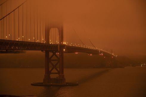 Kebakaran Hutan California, WNI Kabarkan Situasi Terkini
