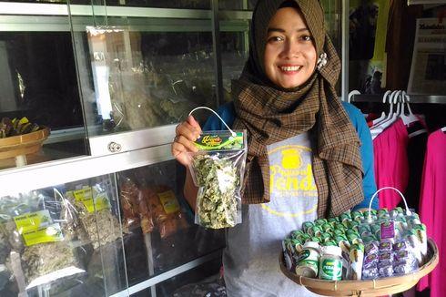 Yuk Cicipi Makanan Dicampur Tanaman Liar di Kulon Progo