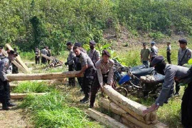 Ilustrasi barang bukti pencurian kayu di Jawa Timur.