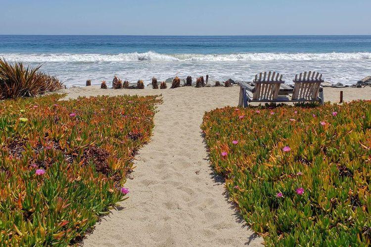 halaman belakang langsung menghubungkan area rumah dengan pantai berpasir putih.