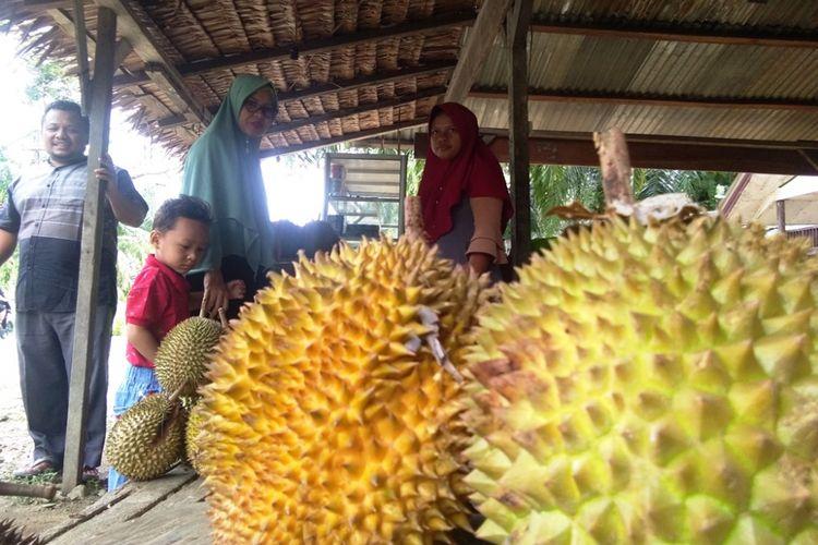 Pembeli memilih durian di Desa Mendumpang, Kecamatan Suro, Kabupaten Aceh Singkil