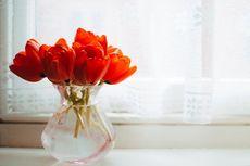 Meletakkan Bunga Segar di Dalam Rumah Bisa Bantu Tubuh Lebih Sehat