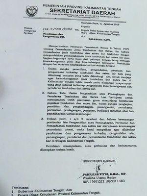 Surat Edaran Sekda Provinsi Kalimatan Tengah di Kantor Jasa Pengiriman JNE, terkait larangan pengiriman Kayu Bajakah ke luar daerah.