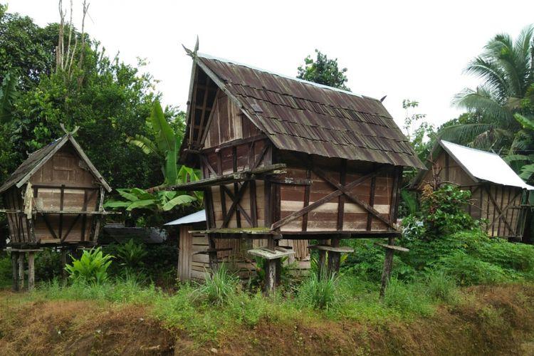 Jurung-jurung di Desa Lopus, Kecamatan Delang, Kabupaten Lamandau, Kalimantan Tengah.