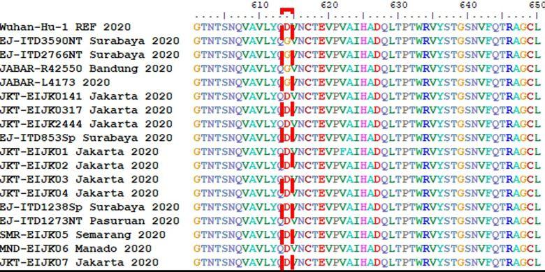 Hasil analisis tim Professor Nidom Foundation (PNF) terkait mutasi virus corona di Indonesia. Dari data tersebut, jenis virus D614G yang dapat menular 10 kali lebih cepat dibanding jenis lain juga ada di Indonesia sejak Maret 2020.